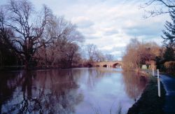 Sonning Bridge Wallpaper
