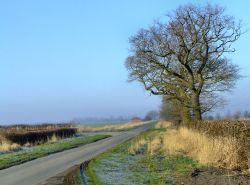 The road to Broomfleet from South Cave