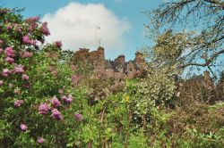 In search of Sleeping Beauty: Crathes Castle
