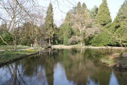 A picture of Thorp Perrow