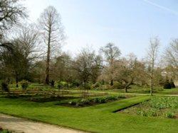 Oxford Botanical Gardens 94