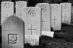 Aldershot Military Cemetery - graves close up