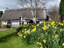 Thatched Cottage in Cropston, Leicestershire