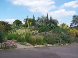 The Dry Garden at Hyde Hall