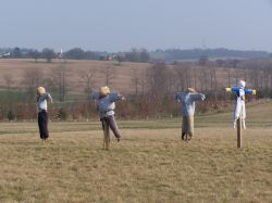 Scarecrows on the Hilltop