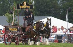 Driffield Show0011