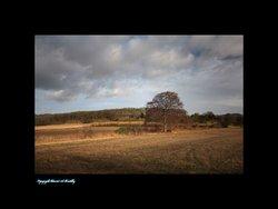 Autumn At Brantingham