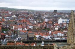 Downtown Whitby from the Abbey grounds