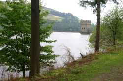 Derwent Reservoir through the trees April 2008