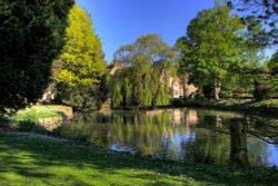 Aylesford Priory pond