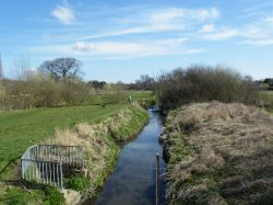 The River Pinn, Ruislip