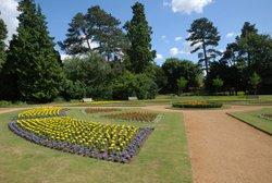 Abingdon Park - July 2009