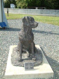 Battle of Britain Mascot Capel le Ferne