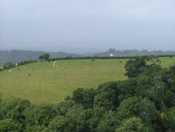 View from Castle Drogo on a wet August day