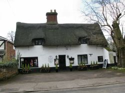 Thatched cottage in Brundall