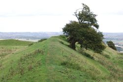 Burrough Hill Fort