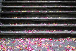 Steps and confetti