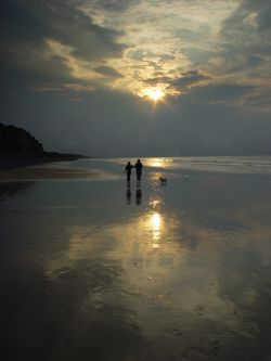 Walking the dog on Sheringham beach in the evening