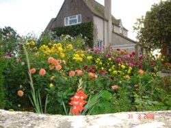 Garden in Nympsfield