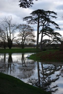The lake at Croome Park in Winter