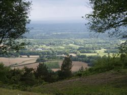 View from Lieth Hill