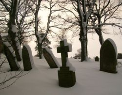St James Churchyard, Coundon 9th Jan 2010