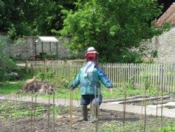 Village Scarecrow