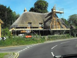 Thatch maintenance