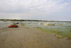 Tide out, River Stour estuary.