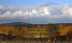 Stour Valley Winter, Shillingstone
