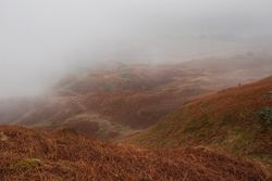 Misty view from Loughrigg Fell - towards Rydal water