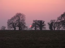 March sunset over Westonbirt 2009