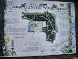 Info board for Gunton Wood
