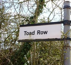 Toad Row Signpost