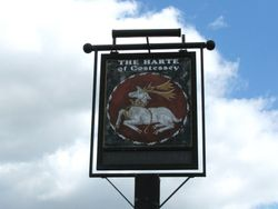 The Harte Pub Sign