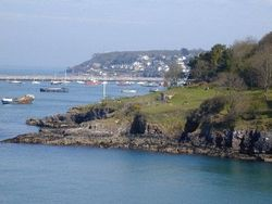 View of Brixham from Battery Gardens.