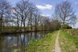 Coventry Canal near Fradley