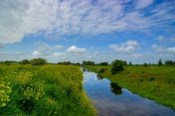 Louth Canal