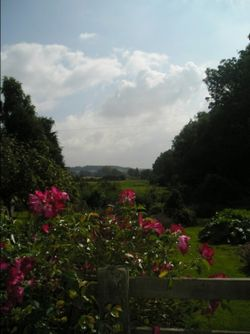 Garden view - Broad Campden