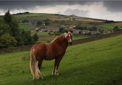 Near Heptonstall, West Yorkshire