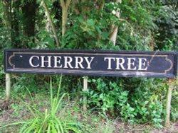 The Cherry Tree sign opposite pub