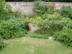 Have we found the secret garden?