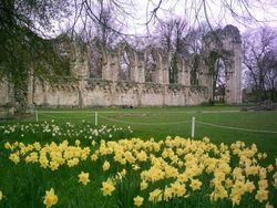 St Mary's Abbey Ruins - Yorkshire Museum Gardens