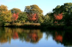 The Lake at Nidd. Autumn is starting to show its colours.
