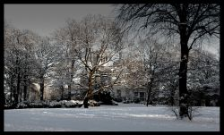 Park in snow