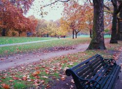 Green Park, Greater London