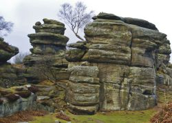 Out and about at Brimham Rocks