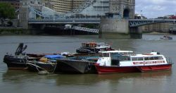 Thames Charters