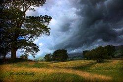 Wensleydale North Yorkshire