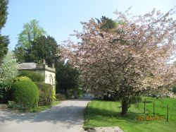 Willersley Castle entrance